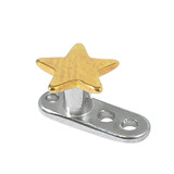 Titanium Dermal Anchor with Titanium Star Top 2.5mm, Gold