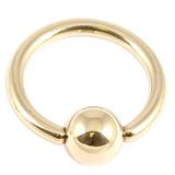 Zircon Steel Ball Closure Ring (BCR) (Gold colour PVD) 1.6mm, 14mm