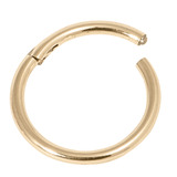 Zircon Steel Hinged Segment Ring (Gold colour PVD) (Clicker) 1.6mm, 12mm