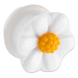 Acrylic Daisy Plug 10