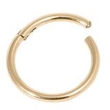 Zircon Steel Hinged Segment Ring (Gold colour PVD) (Clicker) 1.0mm, 10mm