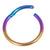 Titanium Hinged Segment Ring (Clicker) 1.2 and 1.6mm Gauge - SKU 31382