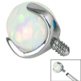 Titanium Claw Set Opal Ball for Internal Thread shafts in 1.6mm (1.2mm). Also fits Dermal Anchor - SKU 34221