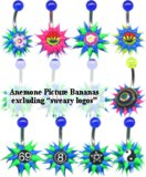 Steel Anemone Logo Belly Bars NON-Sweary ones. Price per banana. Mixed bags of 5. Enter quantity in 5's.