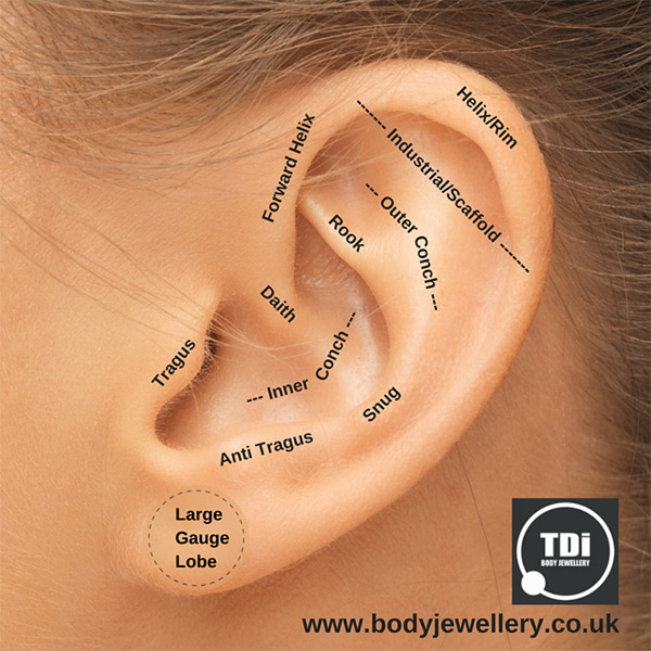 Types of Ear Piercing