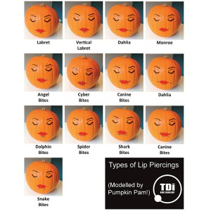 Types of Lip Piercings modelled by Pumpkin Pam